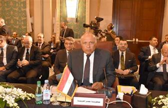 شكري يشارك في اجتماع الدورة العادية لمجلس جامعة الدول العربية على المستوى الوزاري