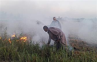 ضبط حالة مخالفة لحرق قش الأرز في الحقول الزراعية وإحالتها للنيابة العامة | صور