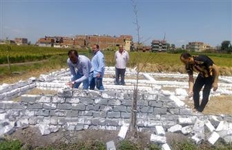 إزالة عدد من المباني المقامة على أراض زراعية بقريتين في كفرالشيخ| صور