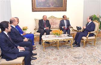 الرئيس السيسي يستقبل وزير الشئون الخارجية الجيبوتي