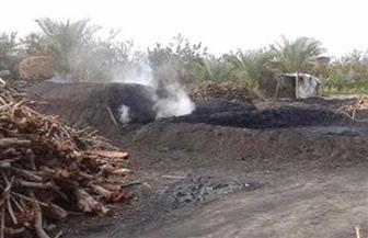 محافظ الشرقية: إزالة مكامير الفحم المخالفة في بلبيس