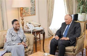 شكري يبحث مع نظيرته الكينية العلاقات الثنائية ومستجدات القضايا ذات الاهتمام المشترك
