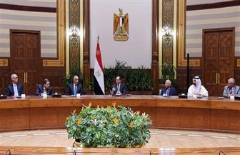 تفاصيل لقاء الرئيس السيسي مع أعضاء مجلس محافظي المصارف المركزية ومؤسسات النقد العربية | صور