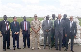 استمرار تسليم شحنات المساعدات المصرية إلى الأشقاء في جنوب السودان| صور