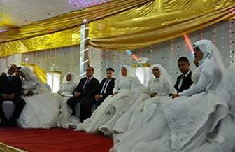 بدء التقدم للمشاركة في الزفاف الجماعي الذى تنظمه محافظة مطروح.. اليوم|صور