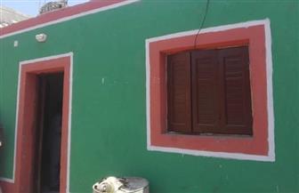تطوير 22 منزلا للأسر الأكثر احتياجا في قرى النجوع جنوب الأقصر| صور