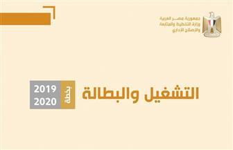 """التخطيط"""": خطة التنمية تستهدف زيادة عدد المشتغلين إلى 28.7 مليون فرد   إنفوجراف"""