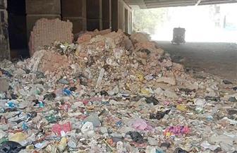 رفع 75 طن مخلفات من الأنفاق أسفل الدائري بالعمرانية