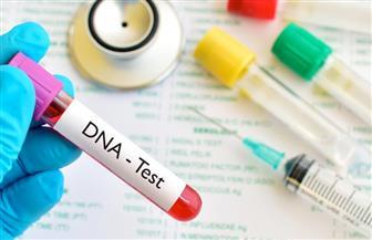 ملايين الأوروبيين يستخدمون تحليل الحمض النووي لمعرفة أجدادهم
