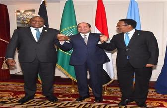 قمة ثلاثية بين الرئيس السيسي ونظيريه الصومالي والكيني لبحث بعض الملفات الثنائية الخلافية بين الطرفين| صور