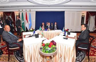 تفاصيل القمة الثلاثية بين الرئيس السيسي ونظيريه الصومالي والكيني| صور