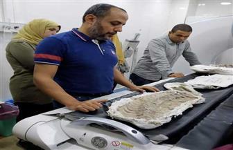 مسح إشعاعي لثعبان وتمساح عمرهما 110 ملايين سنة في مستشفى الباطنة بجامعة المنصورة | صور