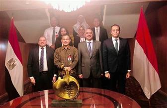السفير المصري في جاكرتا يستقبل سكرتير عام المحكمة الدستورية الإندونيسية | صور