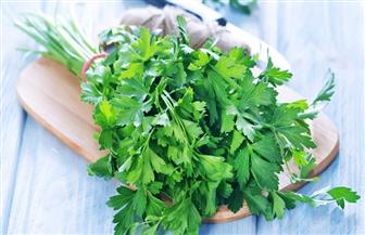 أخصائية تغذية: أكثروا من تناول التوت البري والبقدونس للتخلص من السوائل الزائدة في الجسم