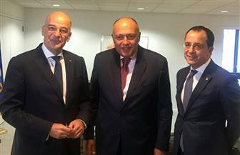 وزير الخارجية يعقد مباحثات مع نظيريه القبرصي واليوناني بنيويورك   صور