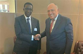 سامح شكري يلتقي نظيره السنغالي على هامش أعمال الجمعية العامة للأمم المتحدة| صور