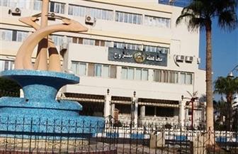الزراعة: ضبط 20 ألف طن أعلاف وخامات للتصنيع بدون ترخيص في محافظة مطروح