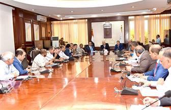 محافظ الأقصر يشهد اجتماع المجلس التنفيذي
