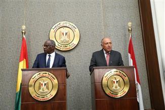 وزير الخارجية: التنمية وتغير المناخ ومكافحة الإرهاب على رأس مناقشاتنا مع الجانب الغيني