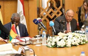 مصر وغينيا توقعان على عدد من الاتفاقيات المشتركة في ختام الدورة السادسة للجنة المشتركة   صور