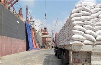 وصول 63 ألف طن قمح روسي لميناء سفاجا