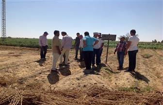 استرداد 87 فدانا من إزالة 12 حالة تعد على أراضي أملاك الدولة بالفيوم | صور