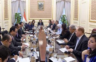 """رئيس الوزراء: تخصيص 500 مليون جنيه من جهاز المشروعات الصغيرة والمتوسطة لأهالي قرى """"حياة كريمة"""""""