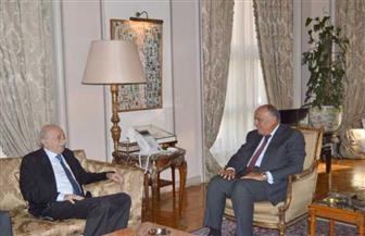 تفاصيل لقاء وزير الخارجية مع وليد جنبلاط حول الأوضاع في لبنان