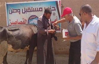 """""""مستقبل وطن"""" يواصل فعاليات القوافل الطبية البيطرية في محافظة الإسماعيلية"""