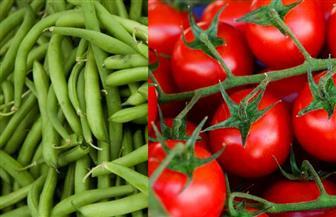 لماذا ارتفعت أسعار الفاصوليا والطماطم.. وإلى متى؟