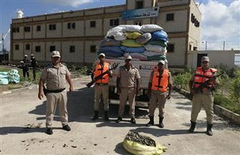 حملة مكبرة لإزالة التعديات على بحيرة البرلس ومنع الصيد | صور