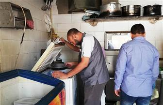 حملة لضبط الأسواق والأسعار بمدينة أسوان | صور