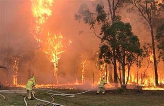أستراليا تحذر من النصب باسم حرائق الغابات