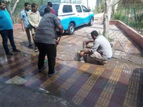 مكي يمنح المسئولين مهلة شهرا للانتهاء من تسريب الصرف بحميات المنصورة  صور