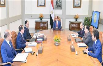 الرئيس السيسي يستعرض التوسع في خطط البحث والاستكشافات البترولية