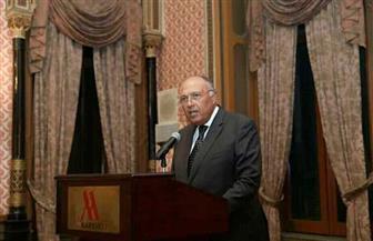 """شكري: """"المبادرة الإقليمية للمعرفة"""" تعكس علاقات الصداقة الوثيقة بين مصر وفنلندا"""