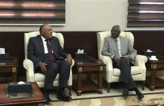 سامح شكري يلتقي وزير رئاسة مجلس الوزراء السوداني