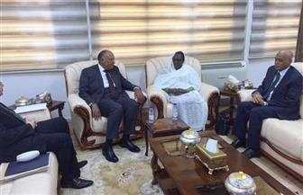 تعرف على تفاصيل لقاء وزيرى خارجية مصر والسودان بالخرطوم | صور