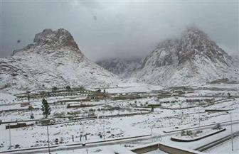 ألبستها الثلوج الرداء الأبيض.. سانت كاترين تنتعش سياحيا في 4 درجات تحت الصفر| صور