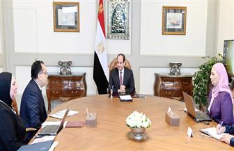 الرئيس السيسي يوجه بمواصلة إنشاء المدن الصناعية المتكاملة والارتقاء بالصناعات المميزة لمصر