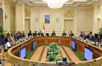 الحكومة توافق على إنشاء صندوق خدمي يتبع وزير قطاع الأعمال العام