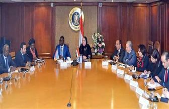 وزيرة الصناعة ونظيرها الكونغولي يبحثان تعزيز التعاون المشترك