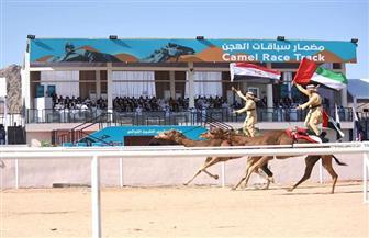 """محافظ جنوب سيناء: مهرجان شرم الشيخ التراثى """"حدث تاريخى"""""""