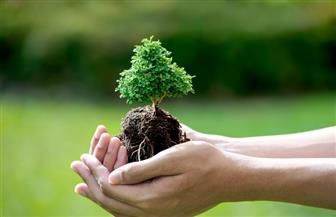 «التحول للأخضر.. طريق للاستدامة».. «البيئة» تطلق الاحتفال بيوم البيئة الوطني