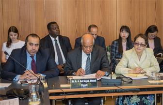 علي عبدالعال: التعامل مع ضحايا الإرهاب أحد المسارات الرئيسية لمواجهة خطره العابر للحدود |صور
