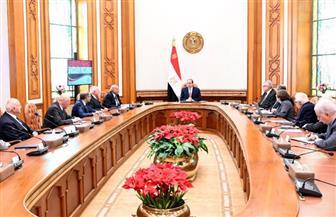 الرئيس السيسي يجتمع مع المجلس الاستشاري لكبار علماء وخبراء مصر | صور