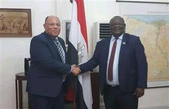 السفير المصري في دار السلام يلتقي رئيس غرفة التجارة والصناعة والزراعة التنزانية | صور