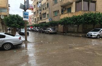 أمطار غزيرة على مدن وقري محافظة كفرالشيخ توقف الصيد وتقطع الكهرباء | صور