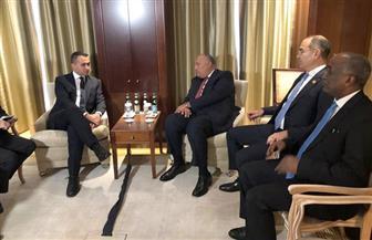 شكري يلتقي نظيره الإيطالي على هامش فعاليات قمة برلين حول ليبيا