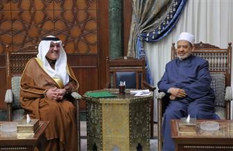 شيخ الأزهر يستقبل السفير السعودي لبحث تعزيز العلاقات المشتركة | صور